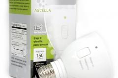 11031 Ascella Emergency Light
