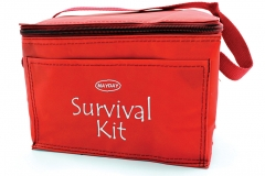 11644 Red Vinyl Cooler Bag with handle